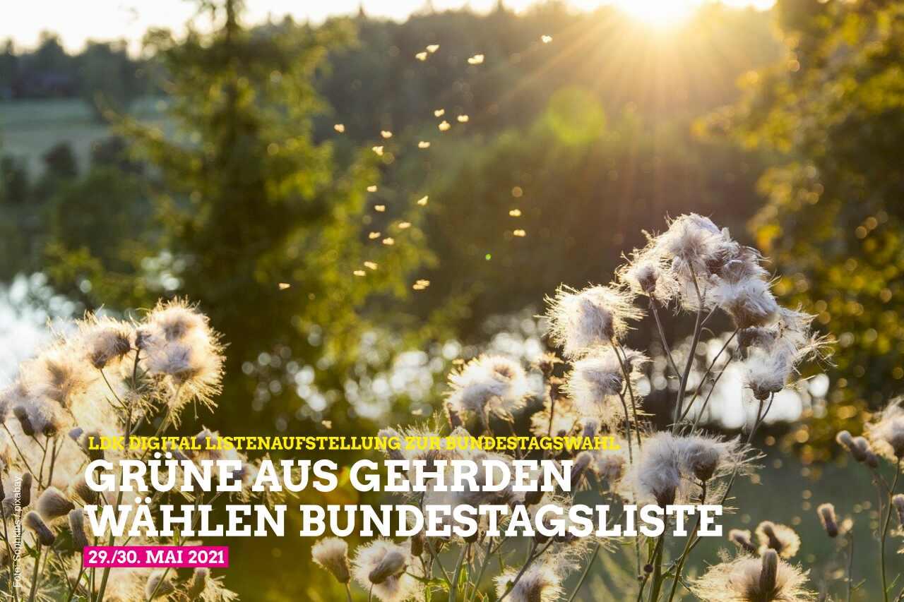 Grüne aus Gehrden wählen Bundestagsliste
